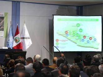 Perú redujo los cultivos de hoja de coca y la ONU nos felicita