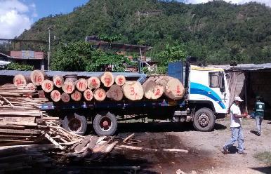Piura: cerca de 120 comerciantes madereros serán desalojados