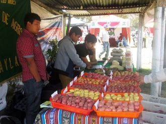 Andahuaylas: realizan gran feria