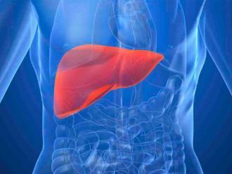 OPS: Más de 13 millones de personas sufren hepatitis C en las América