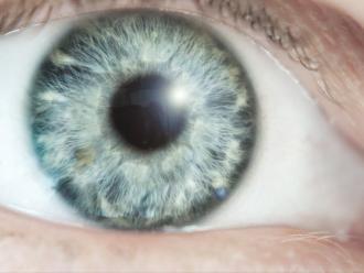 La esquizofrenia puede ser diagnosticada desde el fondo del ojo