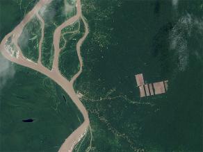 WRI: el apetito por el chocolate consume la Amazonía