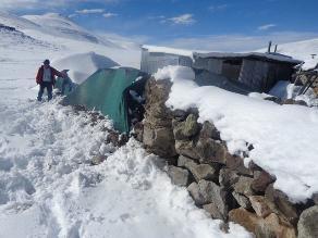 Puno: intensas nevadas continúan afectando a pobladores