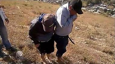 Cajamarca: ronderos castigan a delincuentes con hormigas