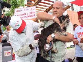 Vacunarán a más de 6000 perros en campaña antirrábica Perú-Bolivia