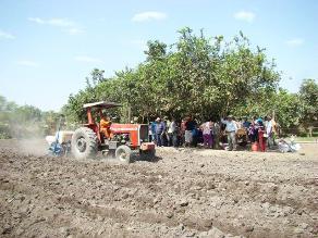 Agricultores no saben si retrasar o adelantar campaña de arroz