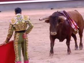 YouTube: Torero español sufre una grave cornada en el cuello