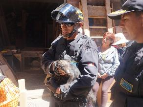 Huancayo: hallan a un