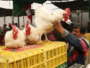 Pan, fideos y pollo podrían encarecerse por subida del dólar