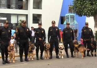 Chiclayo: Policía Canina se prepara para búsqueda y rescate ante FEN