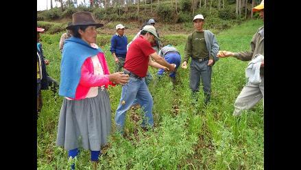 Efectos de fenómeno El Niño ya se sienten en Cusco