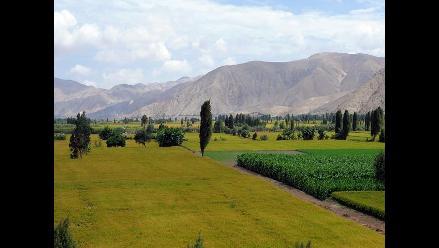 Arequipa: inician plan