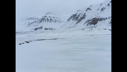 Descubren que el CO2 puede funcionar como fertilizante en el Ártico