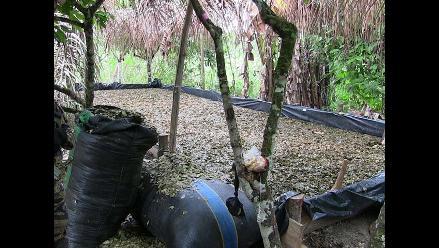 Ayacucho: destruyen dos laboratorios para elaborar droga en el Vraem