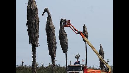 Pantanos de Villa: quitan esculturas de cabezas de gallinazos