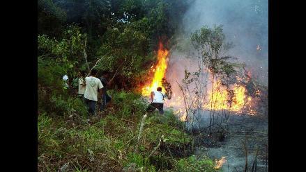 Moyobamba: pobladores se organizan para apagar incendio forestal