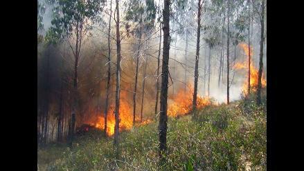 Tarma: incendio forestal fue controlado tras nueve horas