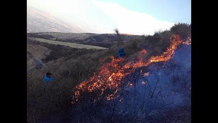 Andahuaylas: nuevo incendio forestal afectó seis hectáreas de plantaciones