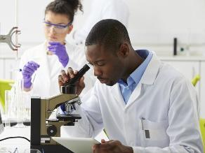 Hallan una manera de atrapar células cancerosas antes de que se propaguen