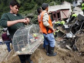 Guatemala: al menos 23 muertos y 600 desaparecidos por un alud