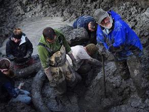 EEUU: Agricultor encuentra huesos de mamut en campo de soya
