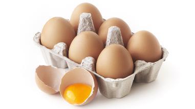 Por el Día Mundial del Huevo, conoce más de este nutritivo alimento