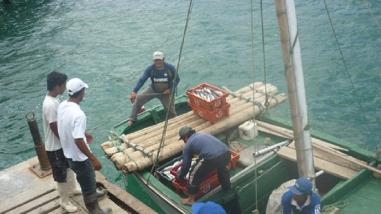 Piura: pescadores solicitan permiso para pesca de perico y pota
