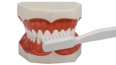 Cuidados de la prótesis dental para prevenir el cáncer oral