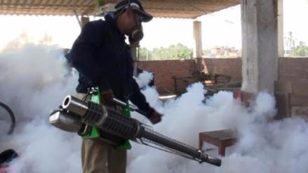 Lambayeque: fumigarán viviendas en Pátapo por el brote de dengue