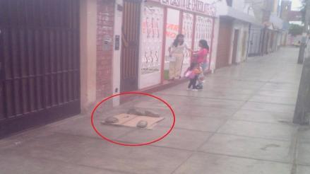 Trujillo: buzón de desagüe pone en riesgo a niños de inicial