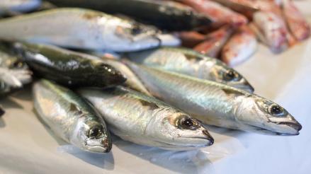 El consumo de pescado protege el corazón y previene la diabetes