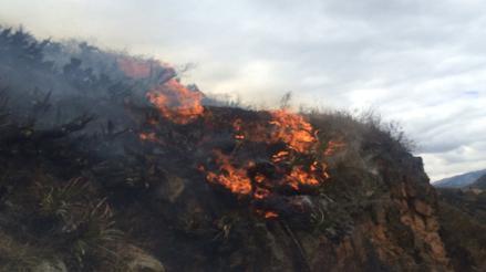 Incendio forestal afecta sector de Ollantaytambo