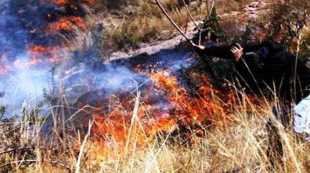 Incendio forestal avanza a parque arqueológico de Ollantaytambo