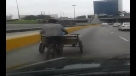 WhatsApp: hombre conduce triciclo en la Vía Expresa