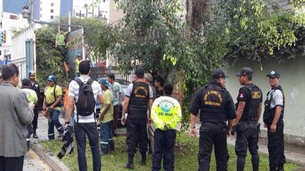 Magdalena: vecinos denuncian tala de árboles por ampliación de vía
