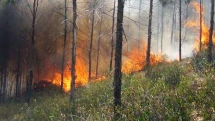 Incendio forestal consume al menos 100 hectáreas de pastizales