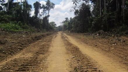 Ordenan parar construcción  de carretera cerca del Manu