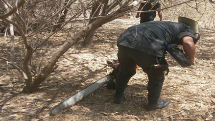Condorcanqui: hombre muere aplastado mientras talaba un árbol