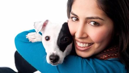 Congreso aprobó Ley de Protección Animal