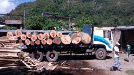 Fiscalía ambiental decomisó madera ilegal valorizada en más de un millón de soles