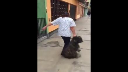 Denuncian a veterinaria que maltrata a perro en San Luis (VIDEO)