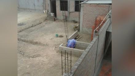 Perro muere por constantes maltratos en Huachipa