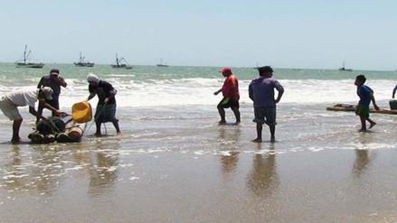 Pescadores de anchoveta reclaman se fije el precio del producto