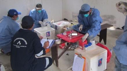 Analizan muestras para determinar presencia de peste bubónica