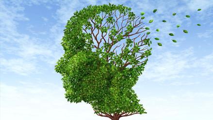 Descubren una molécula que elimina la proteína vinculada al alzhéimer