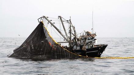 Produce suspende pesca de anchoveta y anchoveta blanca por cinco días