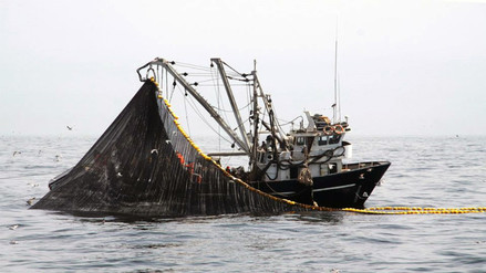 Gremio pesquero anuncia autovedas en pesca de anchoveta