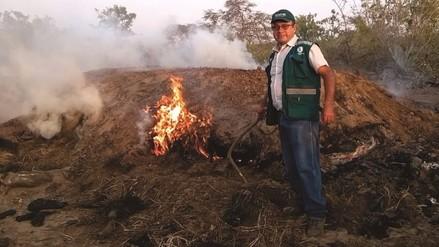 SERFOR destruye 73 hornos artesanales utilizados para producir carbón vegetal