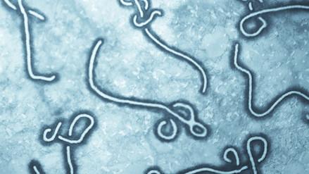 Ébola fue controlado y se espera superarlo definitivamente en 2016