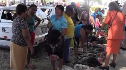 Precio de pavos por Navidad oscila entre los 80 y 200 soles en Piura